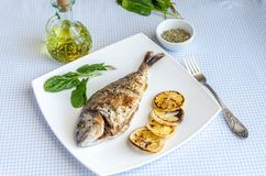 Grilled dorada fish with lemon and spinach Stock Image