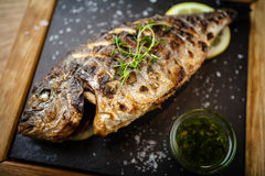 Grilled dorada fish with lemon and spinach Stock Photography