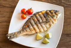 Grilled dorada with lemon and cherry tomatoes Stock Images