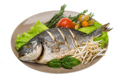 Grilled dorada Stock Photo