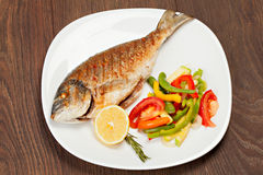 Grilled dorado fish Stock Image