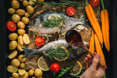 Grilled dorado fish with aromatic herbs and vegetables Royalty Free Stock Photos