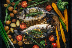 Grilled dorado fish with aromatic herbs and vegetables Stock Image