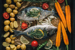 Grilled dorado fish with aromatic herbs and vegetables. Grilled dorado fish with aromatic herbs, spices and vegetables. Healthy sea food for diet, top view Royalty Free Stock Image