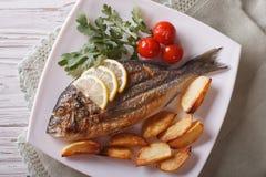 Grilled dorado fish with fried potatoes closeup. horizontal top Stock Photography