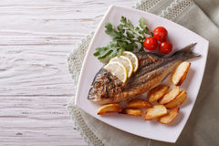 Grilled dorado fish with fried potatoes. horizontal top view Stock Photography