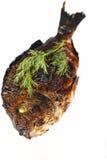 Grilled dorado fish Royalty Free Stock Image