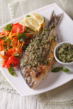 Grilled dorado fish with pesto and vegetable salad. Vertical Royalty Free Stock Photo