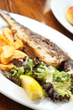 Grilled dorado fish Stock Images