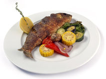Grilled dorado with vegetables stock photography