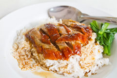 Grilled duck with cooked rice Stock Image