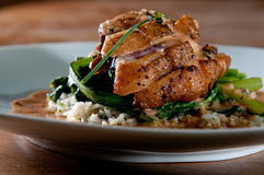 Grilled duck over wild rice Royalty Free Stock Images