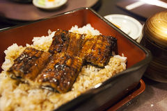 Grilled eel rice in bowl Royalty Free Stock Photography