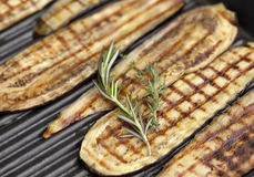 Grilled Eggplant Stock Image