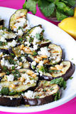 Grilled Eggplant and Goat Cheese with pine nuts ve Royalty Free Stock Image