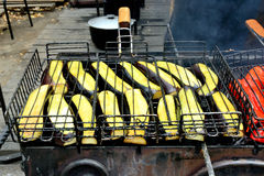 Grilled eggplant. On the grill over the coals. outdoor kitchen. Ukraine, summer, ethnographic festival Royalty Free Stock Image