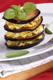 Grilled eggplant with some rice on a plate. Grilled organic eggplant with some rice on a plate royalty free stock photo