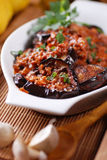 Grilled eggplant with spices Royalty Free Stock Images