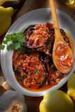 Grilled eggplant with spices Stock Photos