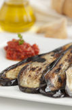 Grilled Eggplant with Tomato Sauce Royalty Free Stock Photos