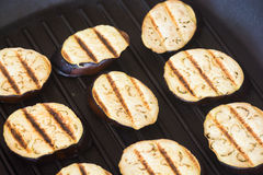Grilled eggplants seasoned Stock Image