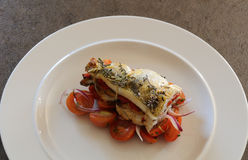 Grilled fillets of zander. Grilled fillets of zander filled with roasted red pepper and mushrooms sitting on tomatoes salad royalty free stock photo