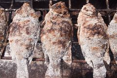 Grilled fish. Royalty Free Stock Photos