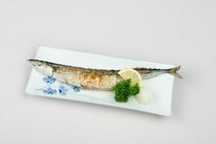Grilled fish. In a restaurant Stock Images
