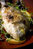 Grilled Fish. Big Grilled Fish with Lemon Royalty Free Stock Photos