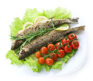 Free Grilled Fish Royalty Free Stock Images - 17792039