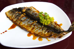 Grilled fish. Japanese style grilled fish in a white plate with black sauce Stock Photos