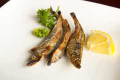 Grilled fish. Japanese style grilled fish in a white plate with lemon Stock Photo