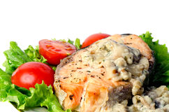 Grilled fish. And vegetables whith salad Stock Image