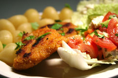 Grilled fish. Fish with breadcrumb coating, tomato and cucumber salad, pasta, parsley stock image