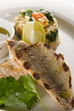 Grilled fish. With rice and lemon sauce royalty free stock image