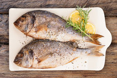 Grilled fish from above. Luxurious seafood eating. stock image