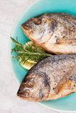 Grilled fish background. Stock Images