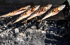 Grilled fish on barbecue Stock Photos