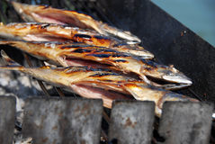 Grilled fish on barbecue Royalty Free Stock Photos