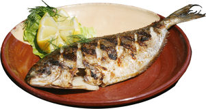 Grilled fish on barbecue Royalty Free Stock Photo