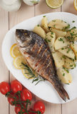 Grilled fish with boiled potato Stock Image