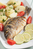 Grilled fish with bolied potato Stock Images