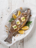 Grilled fish. With butter and lemon, selective focus Stock Images