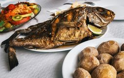 Grilled fish and canarian potatoes in Canary islands. Grilled fish on plate, canarian wrinkly potatoes and salad with vegetables and fruits. Tenerife, Canary stock photos