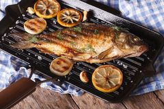Grilled fish carp with lemon  on a frying pan grill, horizontal Stock Photography