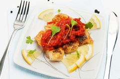 Grilled Fish with carrot pickle. Stock Images