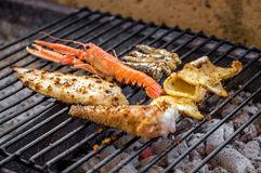 Grilled fish on charcoals. Grilled mixed fish on charcoals stock image
