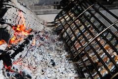 Grilled fish on charecoal Royalty Free Stock Photography