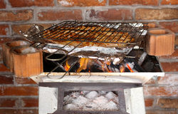 Grilled fish coal. Typical Mexican seafood, recipe Royalty Free Stock Photo