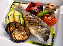 Grilled fish dorado on the ceramic plate. Dorado on the ceramic plate isolated on white Stock Photos